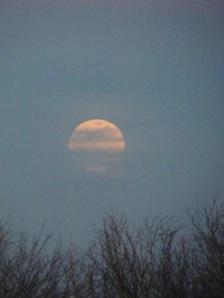 rising moon 3