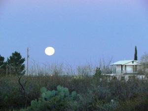 setting moon, jan 16, 2014