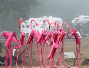 weather resistant flamingos