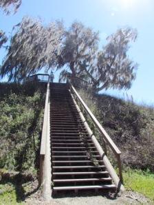 meditation stairs