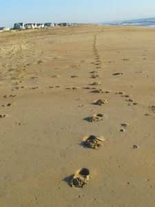 runner's footprints